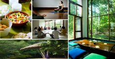 Detox & Energy Chakra Cleansing Yoga Retreat in India, All Year Long