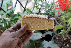 Baath cake a Traditional Goan Delicacy made of Semolina and Coconut! I have given a twist to this traditional cake keeping the cake to the basics but frosted with cream and toasted coconut.  want to know more about Baath cake check the recipe here@http://www.flavorsofmumbai.com/baath-cake-recipe/  #baathcake, #goanfood, #indianfood, #dessert
