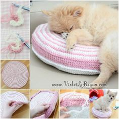 Your furbaby will love this warm and comfy Knitted or Crochet Pet Pouf Bed.You will love this Crochet Pet Bed Free Pattern and we have included lots of easy ideas for you to try.Cute and Cuddle Crochet Cat CaveFind fantastic free crochet patterns an Diy Crochet Cat, Knitted Cat, Crochet Pillow, Crochet Home, Free Crochet, Knit Crochet, Knitting Projects, Crochet Projects, Diy Dog Bed