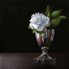 Gardenia 6 х 6 - M Collier