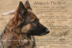 Whisper in the Wind... ♥