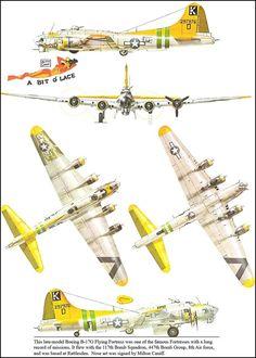 A Bit-o-Lace. B 17, Boeing Aircraft, Aircraft Painting, Ww2 Planes, Aircraft Design, Nose Art, Aviation Art, Panzer, Military Aircraft