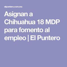 Asignan a Chihuahua 18 MDP para fomento al empleo   El Puntero