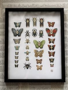 Cabinet of Curiosities Specimen no. 41 - The Curious Collection - original 3D insect paintings by Mab Graves. So cool.