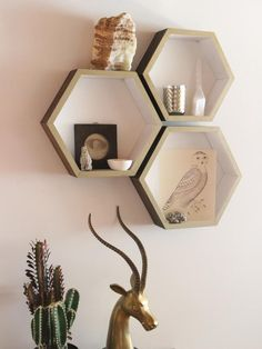 Maybe for shelving in the powder room or one of the bedrooms.  How to Make Hexagonal Shelves - on HGTV by: Dan Faires