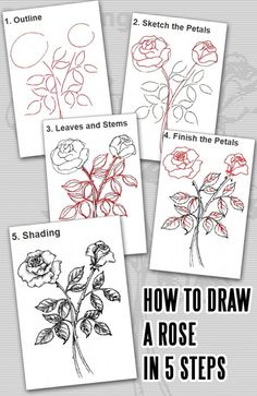 How to Draw a Rose i