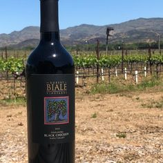 Thanks for the kind words, Shaun Myrick.  #biale #bialevineyards #robertbialevineyards #winedestination  #Repost @shaunmyrick from Instagram ・・・ After following @bialevineyards on social media for awhile I finally got the opportunity to visit and taste! If you love amazing #zinfandel or #petitesirah you must go visit! Right on Big Ranch Road and the tasting room staff are amazing!!!!! Black Chickens, Tasting Room, Napa Valley, Kind Words, Red Wine, Opportunity, Ranch, Alcoholic Drinks, Social Media