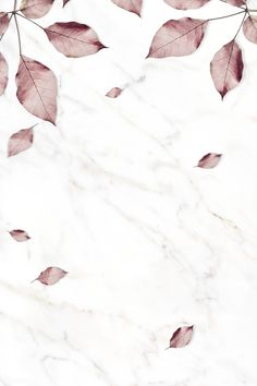 Flower Background Wallpaper, Background Patterns, Textured Background, Marbel Background, Flower Backgrounds, Wallpaper Backgrounds, Watercolor Wallpaper, Watercolour Painting, Pink Leaves