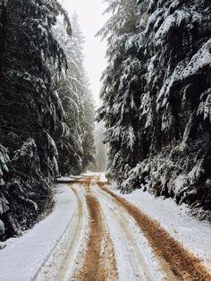 winter / photo by ioegreer