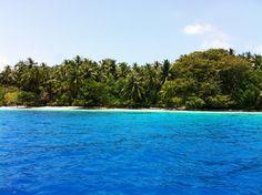 Ankunft !!! Arrival Delphine, Water, Outdoor Decor, Rainy Season, Snorkeling, Maldives, Sunrise, Diving, Explore