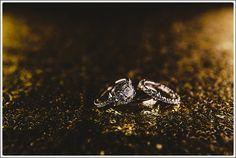 Cranbrook Wedding Photographers - Caitlin Dale 072