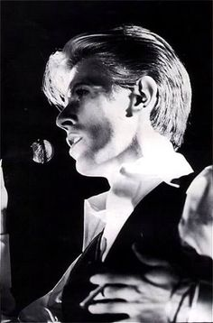 Thin White Duke Photo: