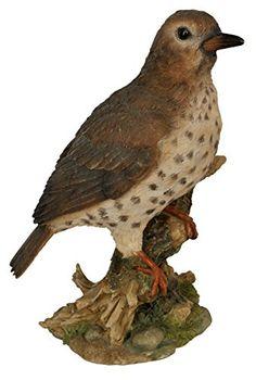"Vivid Arts Ltd Statue de jardin Champignons'oiseau"" Vivid... https://www.amazon.fr/dp/B00ZFV3NP8/ref=cm_sw_r_pi_dp_aCxzxb8MKZYKR"