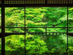 緑が織りなす幻想的な世界。2ヶ月間だけの幻「瑠璃光院」の青紅葉が美しすぎる | RETRIP[リトリップ]