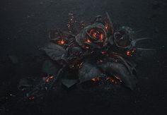 Photographer Ars Thanea captures the poetic beauty of a smoldering #rose bouquet. #photography #flowers