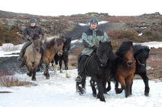 Travel around with me by horse. Riding thru the nature of Iceland on a Icelandic Horse.