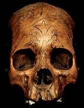 DAYAK HUMAN TROPHY SKULL Asian Human Trophy Skulls Ancestor Skulls Head Hunting Human Trophy Skulls David Howard Tribal Art
