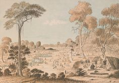 Great Meeting of Gold Diggers - Mt Alexander Goldfields near Bendigo - December 1851 Old Pictures, Old Photos, Australian People, Gold Prospecting, The Settlers, Broken Promises, Melbourne Victoria, Victorian Gold, Gold Rush