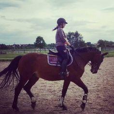 Horse#sport#Jumping#peppi