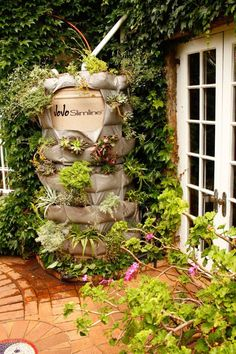 Transform your rainbarrel into a vertical garden, you'll create a stylish feature and gain extra planting space.