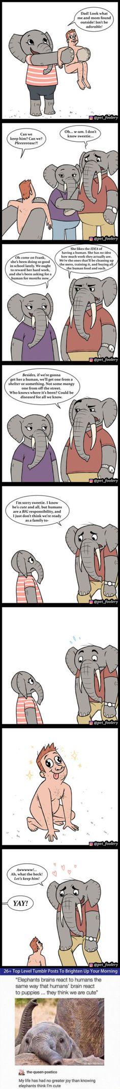 20 Funny Animal Comics By Pet Foolery