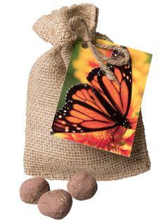Milkweed Seeds - Butterfly Garden Seed Balls for Monarch Butterflies