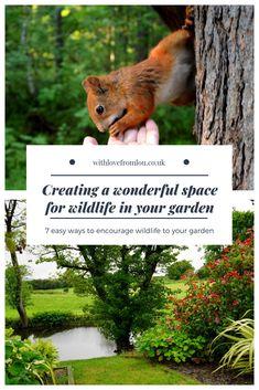 Creating Space for Wildlife in Your Garden - With love from Lou Garden Ideas Uk, Garden Boxes, Garden Projects, Organic Gardening, Gardening Tips, Kitchen Gardening, Cheap Plants, Backyard Lighting, Small Space Gardening