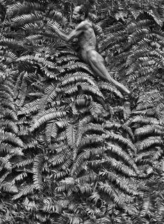 Yali tribe. Yali men thatching with tree fern leaves . West Papua, Indonesia, 2010. Sebastião Salgado.