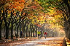 Popular on 500px : morning exercise by TigerSeo