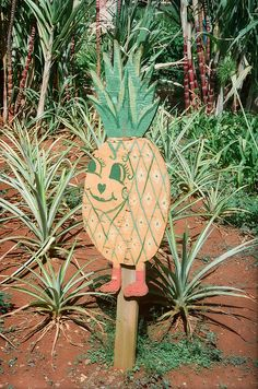 hand painted pineapple signage