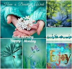 Turquoise Monday Collage Good Morning Happy Monday, Good Morning Good Night, Happy Weekend, Collages, Paint Paint, Color Collage, Mood Colors, Beautiful Collage, Photo Images