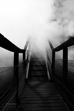 Stairways to the unknown by Joshua Haryantho, Wairakei thermal village, North NZ.