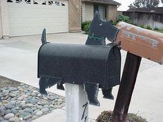 Caixas de correio curiosas | Xpock - Videos Youtube