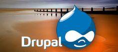 Drupal Development Mississauga