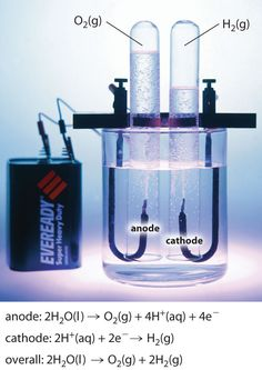 Electrochemistry. The basis behind a battery: anode and cathode separated by fluid. #battery #physics #electrochemistry