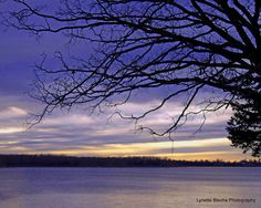 Fellows Lake #sunset #water #trees #landscape #photography #sky