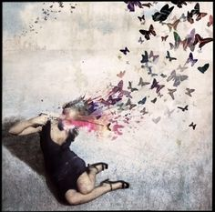 butterfly gunshot