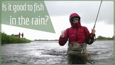 Fly fishing in the rain during a fishing trip to Lapland of Sweden in Lainio. This video answers if is it better to fish in the rain or sun?