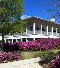 Gulf Shores Golf Club in #GulfShores & #OrangeBeach