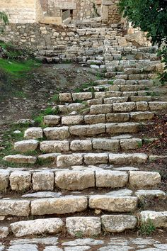 The steps down to the Garden of Gethsemane www.ffhl.org #holyland #franciscans #pilgrimage