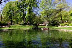 JARDIN ROYAL - D'une surface de 1,7 hectare, le jardin Royal regroupe de nombreuses essences d'arbres comme le tulipier de Virginie ou le cèdres du Liban.