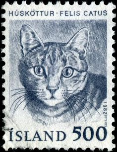 Huskottur - Felis Catus | postage stamp, Iceland  1982 |  designed by J. Magnusson