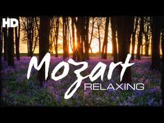 The Best Relaxing Classical Music Ever By Mozart - Relaxation Meditation Reading Focus Relaxation Meditation, Meditation Music, Reggae Music, Music Songs, Music Videos, What Is Classical Music, Music For Studying, Angel Guide, Mozart