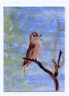 ad0091df58f51 An ACEO with a Nightingale painted in glass paint on acetate over a  watercolour background.