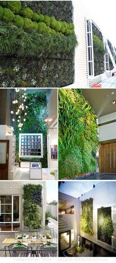Vertical Gardens - More Living Plant Walls #PlantWalls #LivingWalls @REalPalmTrees #RealPalmTrees