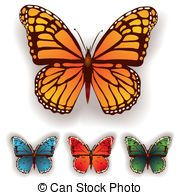 color butterfly isolated on a white