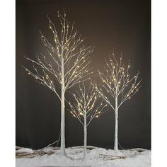 Birch Tree Decor, White Birch Trees, White Branches, Branch Decor, Outdoor Xmas Lights, Holiday Lights, Christmas Lights, Birch Christmas Tree, Outdoor Christmas