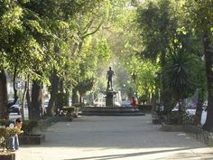 Colonia Roma Norte, Mexico DF - One month left in Mexico, im gonna miss my neighborhood so bad.