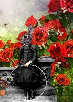 Miss Bunny by Jayne Alexander