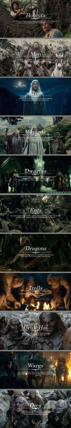 Races and Creatures of Middle Earth -- all that's missing are the Great Eagles, Mordor Flies, Bats, Beornings, Balrogs, the Valar themselves, and whatever the crap Tom Bombadil is.